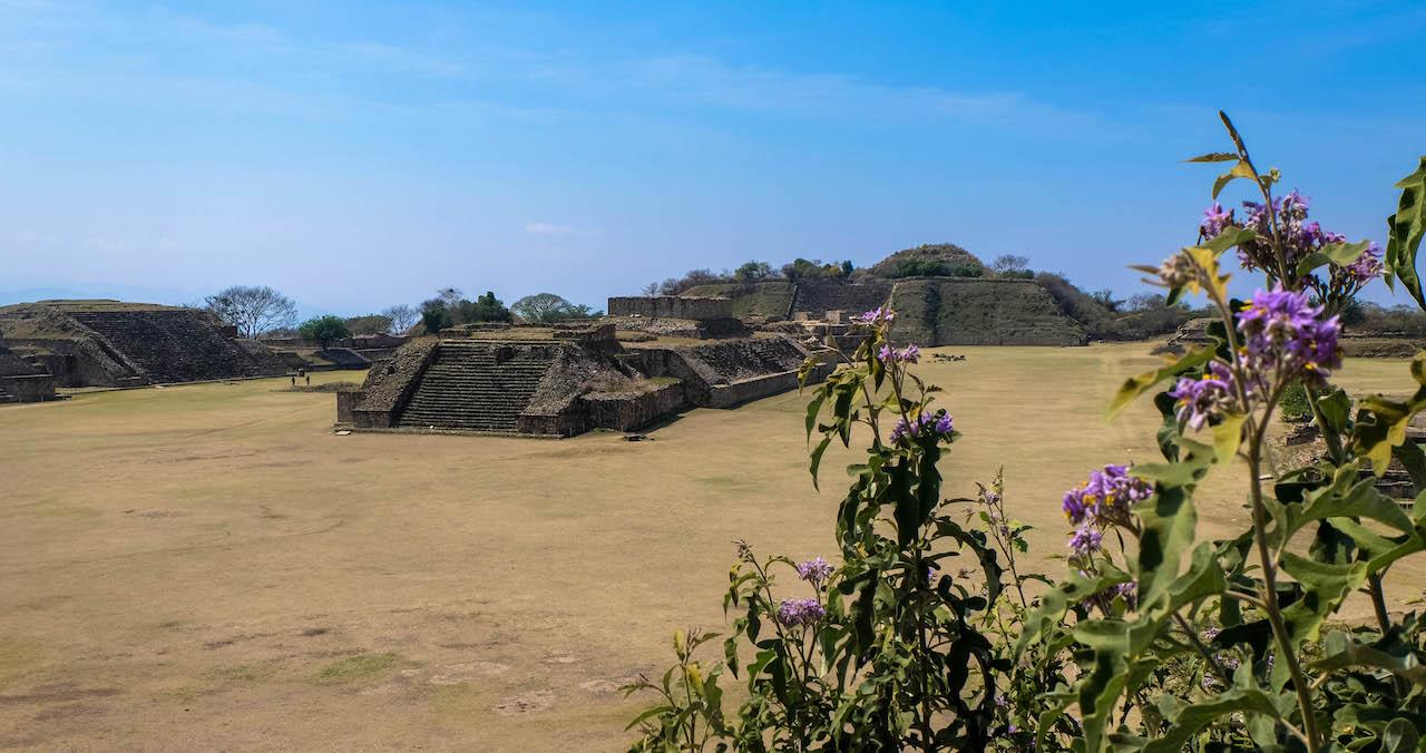 oaxaca mayas pyramides mexique