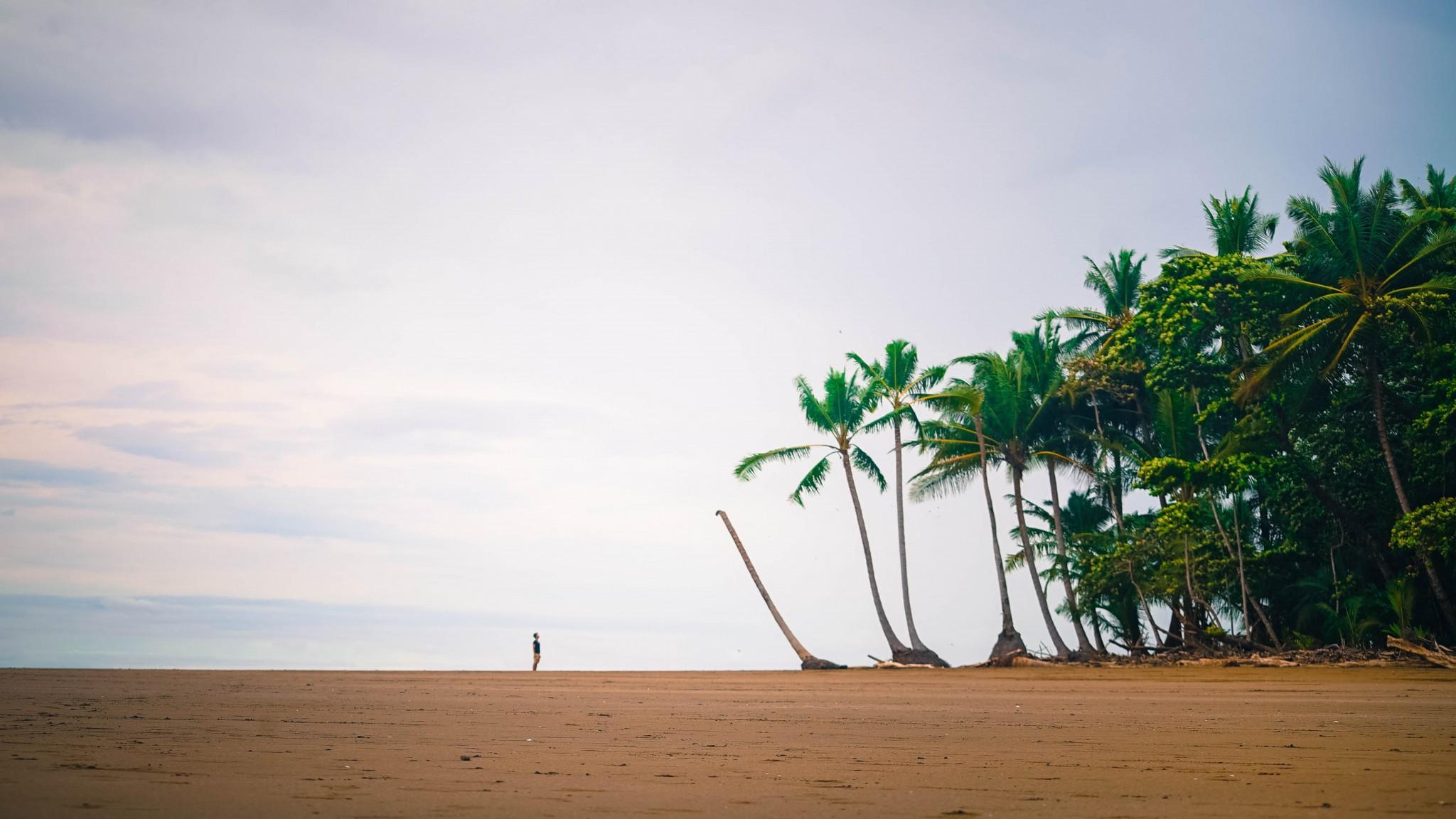 ballena beach uvita costa rica